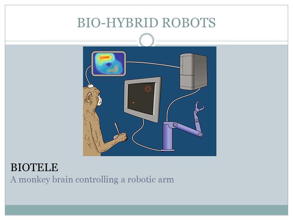 BIO-HYBRID ROBOTS BIOTELE A monkey brain controlling a robotic arm