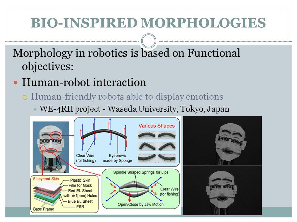 Shape-shifting Robots: dynamically reconfigure morphology based on circumstances  CONRO robot  Polymorphic Robotics Laboratory - University of Southern California BIO-INSPIRED MORPHOLOGIES