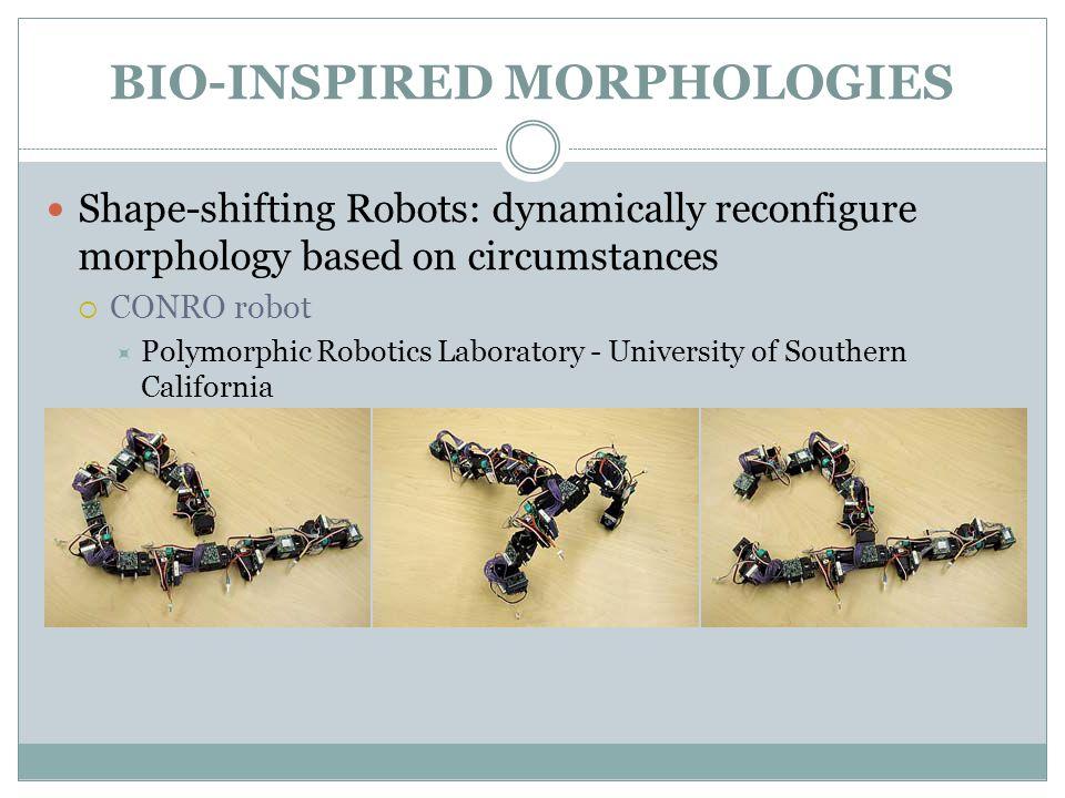 BIO-INSPIRED SENSORS Overview Bio-inspired Morphologies Bio-inspired Sensors Bio-inspired Actuators Bio-inspired Control Architectures Energetic Autonomy Collective Robotics Bio-hybrid Robots Discussion