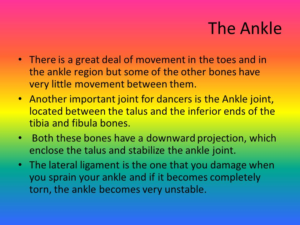 The Ankle There is a great deal of movement in the toes and in the ankle region but some of the other bones have very little movement between them.