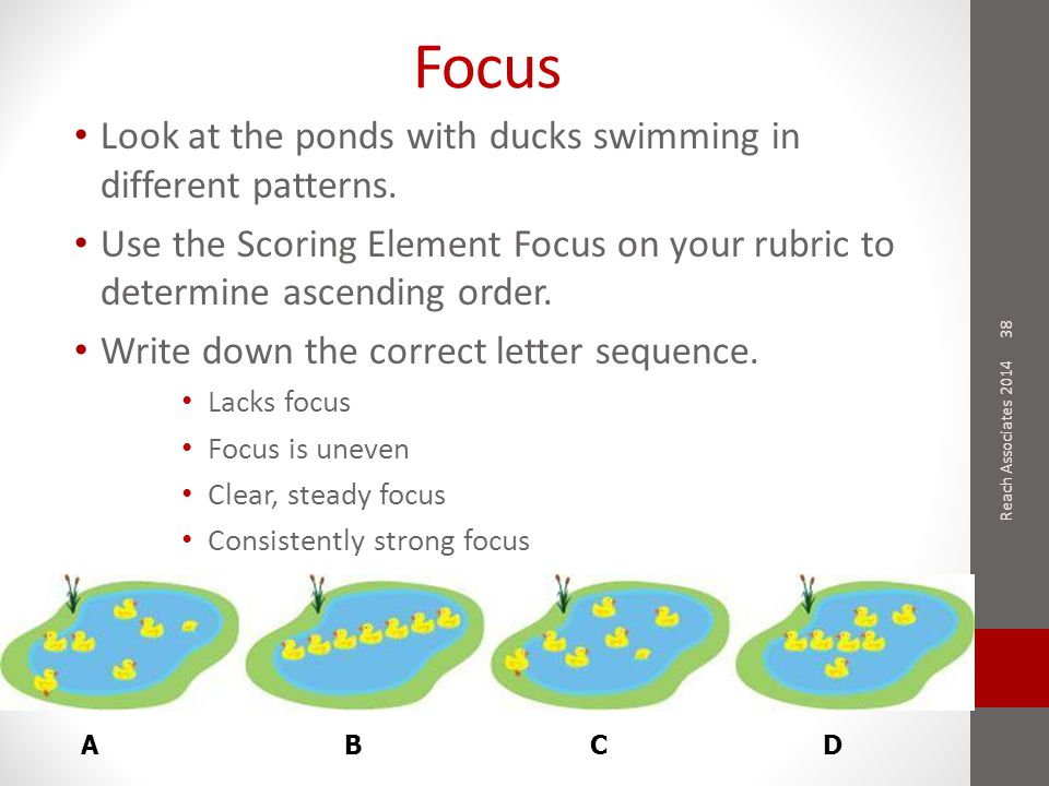 Focus Look at the ponds with ducks swimming in different patterns.