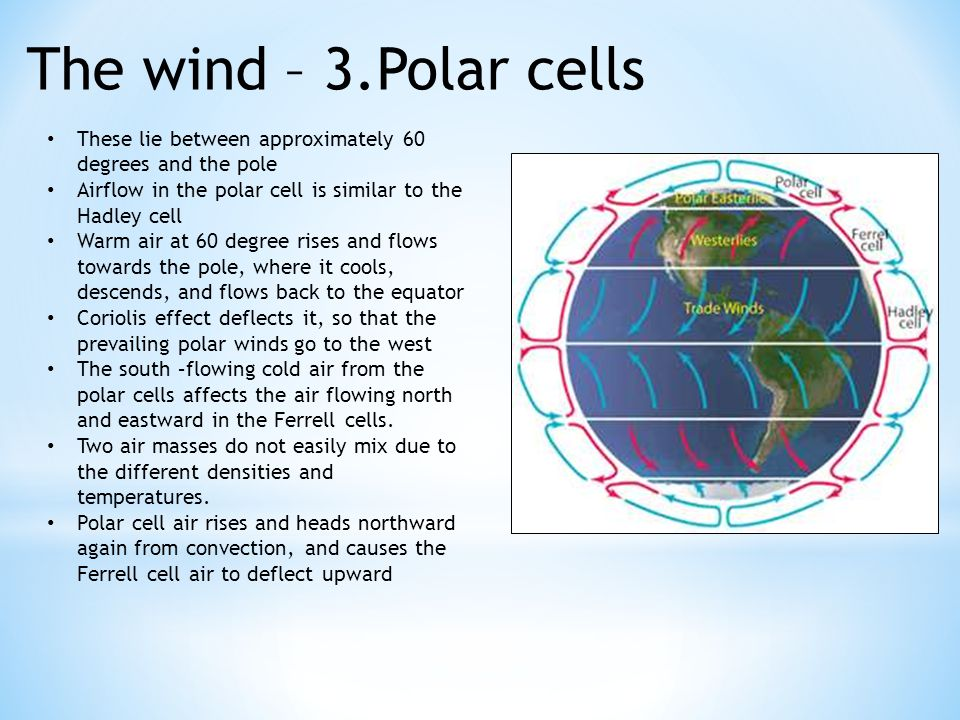 The wind – 3.Polar cells These lie between approximately 60 degrees and the pole Airflow in the polar cell is similar to the Hadley cell Warm air at 60 degree rises and flows towards the pole, where it cools, descends, and flows back to the equator Coriolis effect deflects it, so that the prevailing polar winds go to the west The south –flowing cold air from the polar cells affects the air flowing north and eastward in the Ferrell cells.