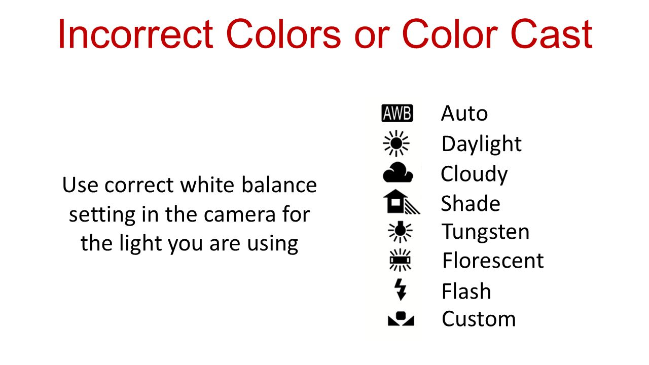Use correct white balance setting in the camera for the light you are using Auto Daylight Cloudy Shade Tungsten Florescent Flash Custom Incorrect Colors or Color Cast