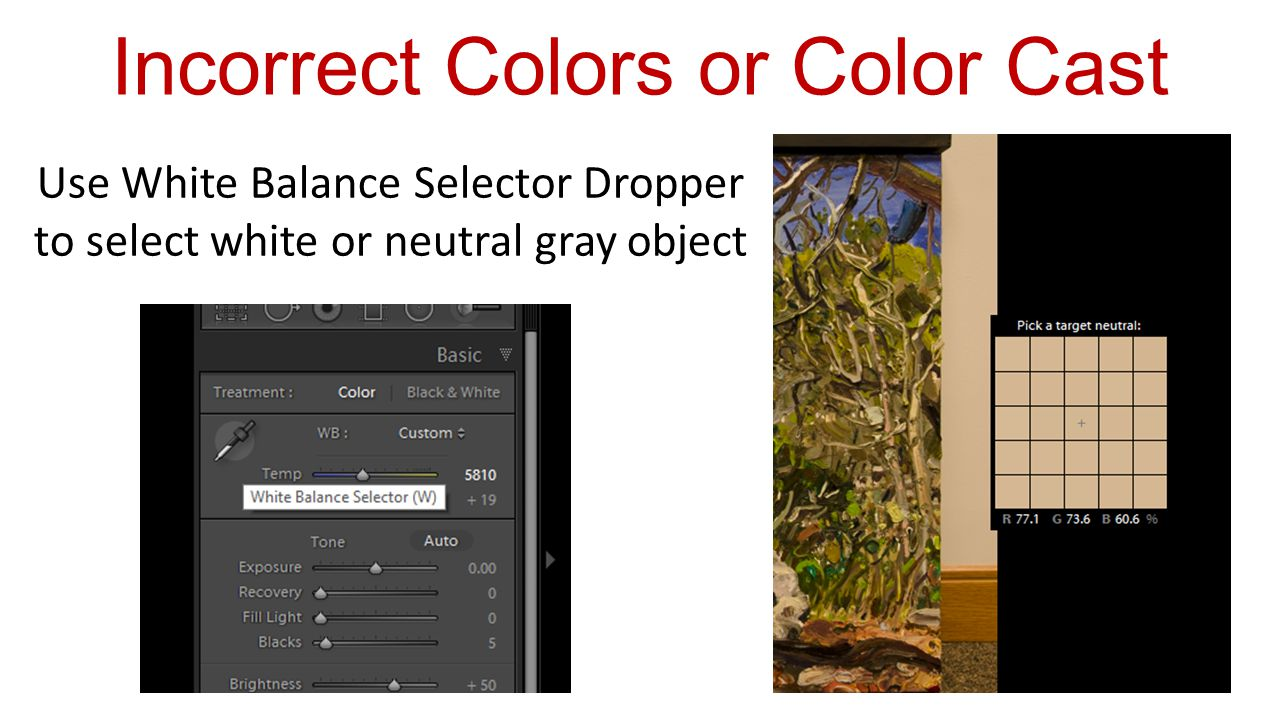 Use White Balance Selector Dropper to select white or neutral gray object Incorrect Colors or Color Cast