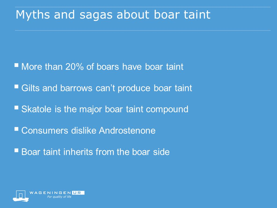 Myths and sagas about boar taint  More than 20% of boars have boar taint  Gilts and barrows can't produce boar taint  Skatole is the major boar taint compound  Consumers dislike Androstenone  Boar taint inherits from the boar side