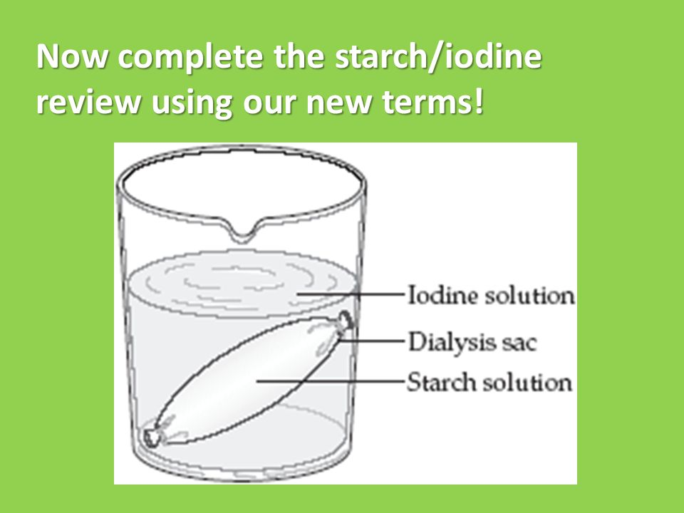 Now complete the starch/iodine review using our new terms!