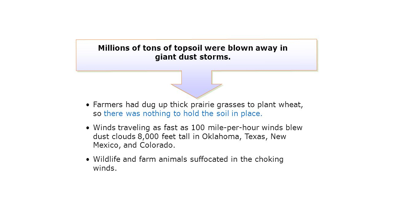 Farmers had dug up thick prairie grasses to plant wheat, so there was nothing to hold the soil in place. Winds traveling as fast as 100 mile-per-hour