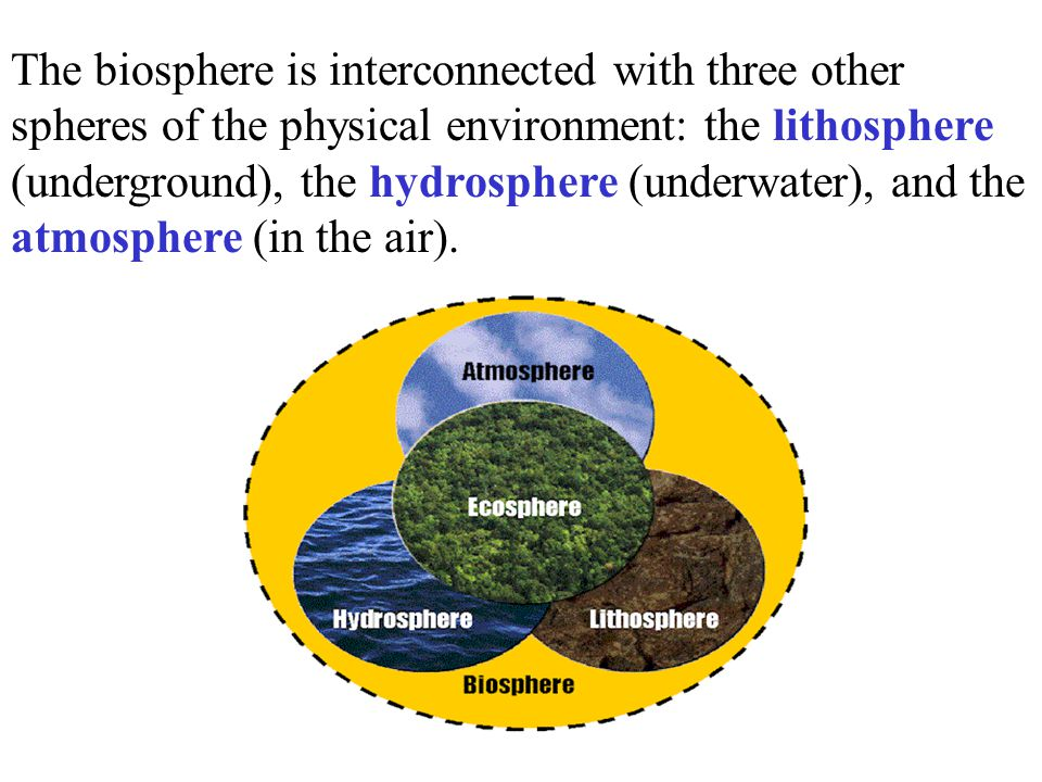 The biosphere is interconnected with three other spheres of the physical environment: the lithosphere (underground), the hydrosphere (underwater), and
