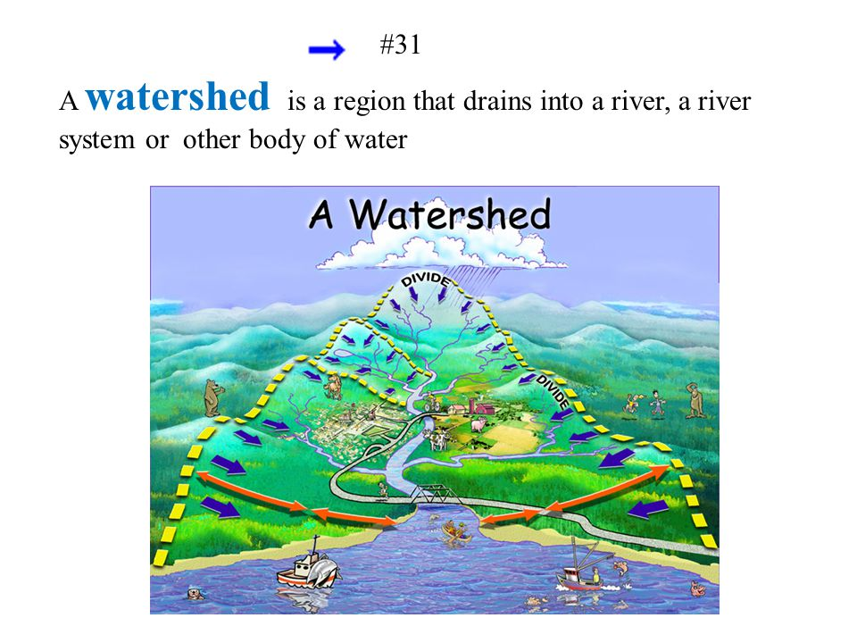 A watershed is a region that drains into a river, a river system or other body of water #31