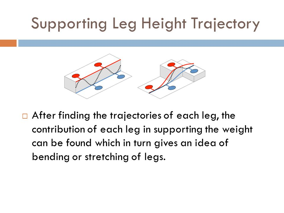 Supporting Leg Height Trajectory  After finding the trajectories of each leg, the contribution of each leg in supporting the weight can be found which in turn gives an idea of bending or stretching of legs.