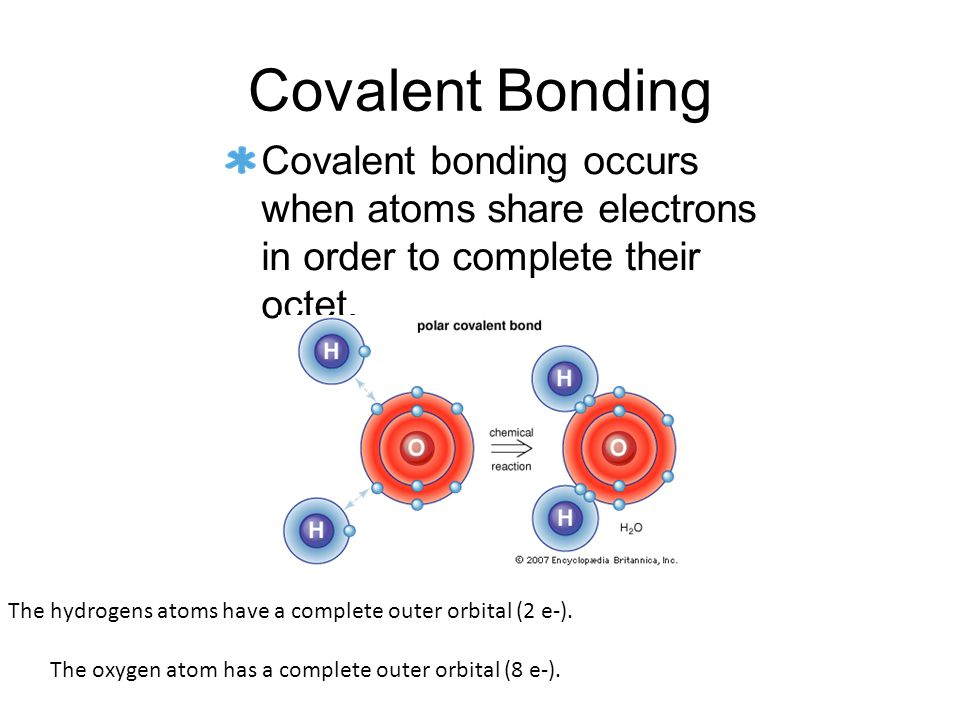 Covalent Bonding Covalent bonding occurs when atoms share electrons in order to complete their octet.