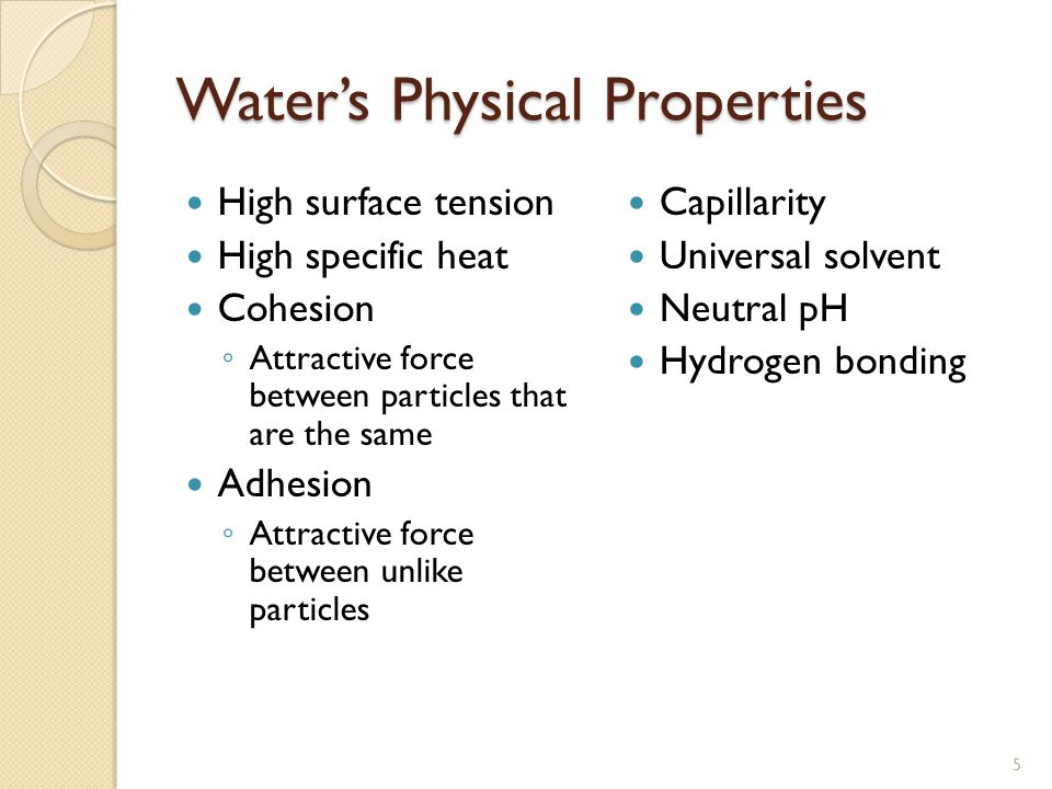 Water's Physical Properties High surface tension High specific heat Cohesion ◦ Attractive force between particles that are the same Adhesion ◦ Attractive force between unlike particles Capillarity Universal solvent Neutral pH Hydrogen bonding 5