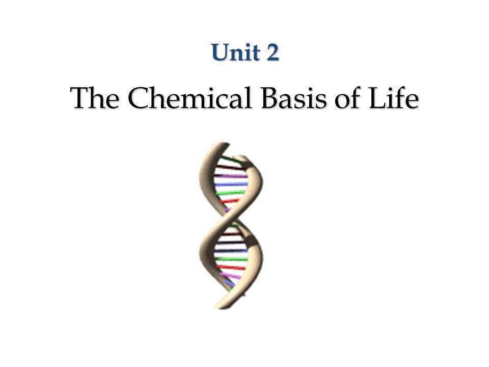 Unit 2 The Chemical Basis of Life
