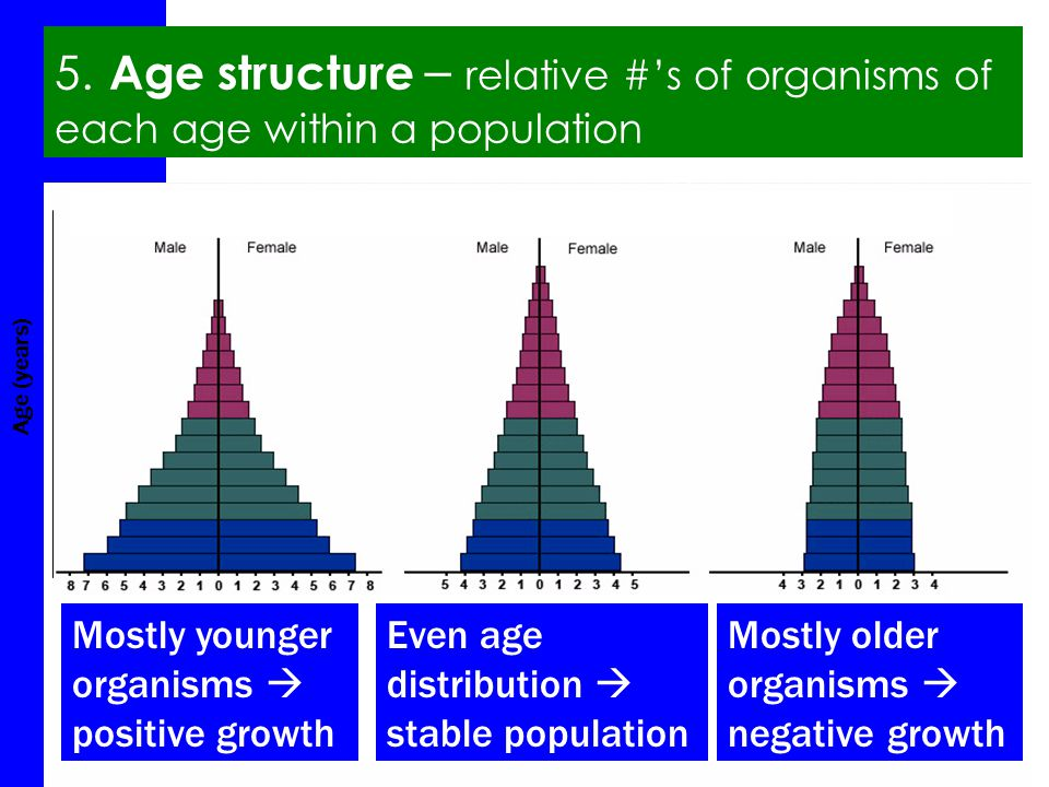 #2.2 Aim: How do we describe populations? Agenda QOD (5) Lesson: populations (15) Activity: (15) Summary (5) HW #9 5. Age structure – relative #'s of