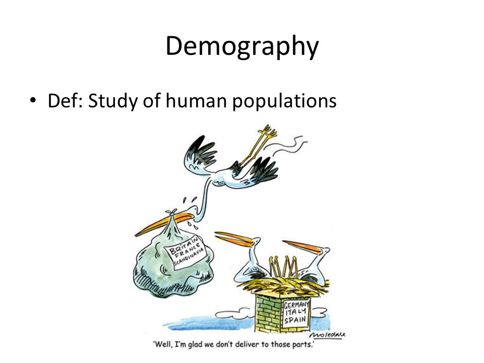 Demography Def: Study of human populations