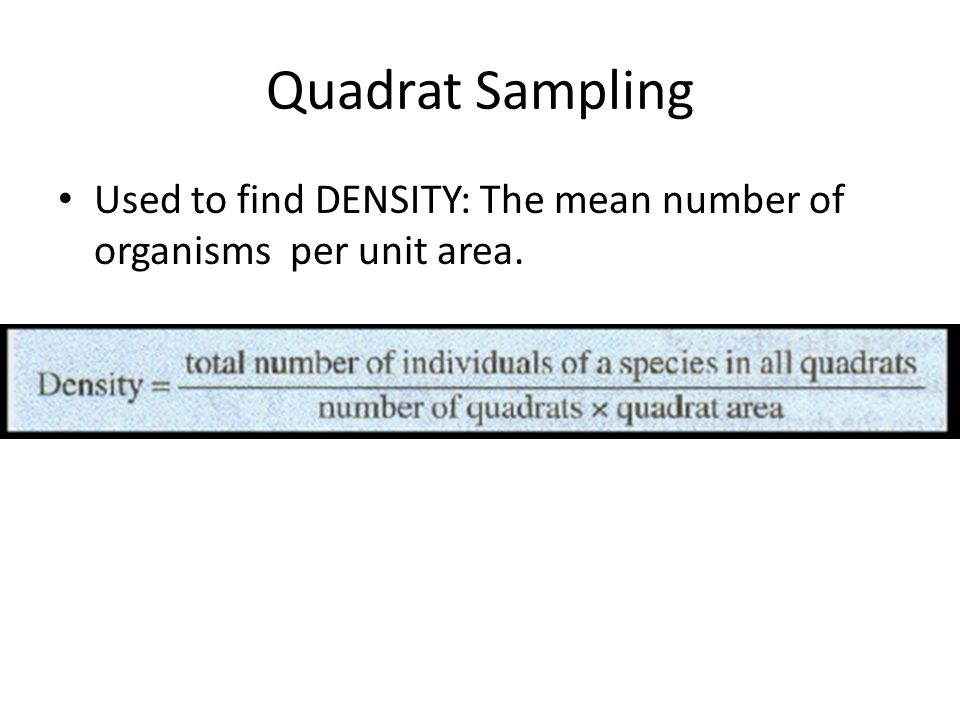 Quadrat Sampling Used to find DENSITY: The mean number of organisms per unit area.
