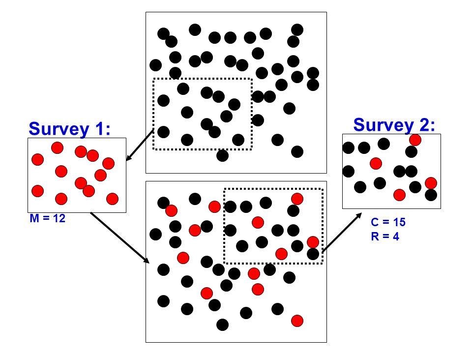 Survey 1: M = 12 Survey 2: C = 15 R = 4