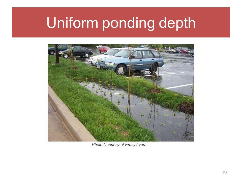 Uniform ponding depth 28 Photo Courtesy of Emily Ayers