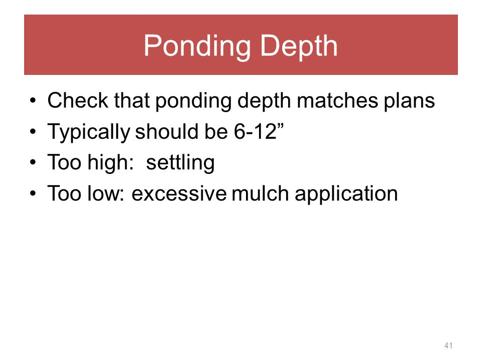 Ponding Depth Check that ponding depth matches plans Typically should be 6-12 Too high: settling Too low: excessive mulch application 41
