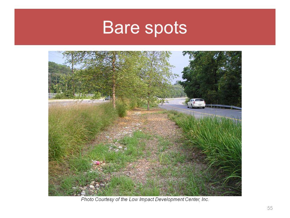 Bare spots 55 Photo Courtesy of the Low Impact Development Center, Inc.