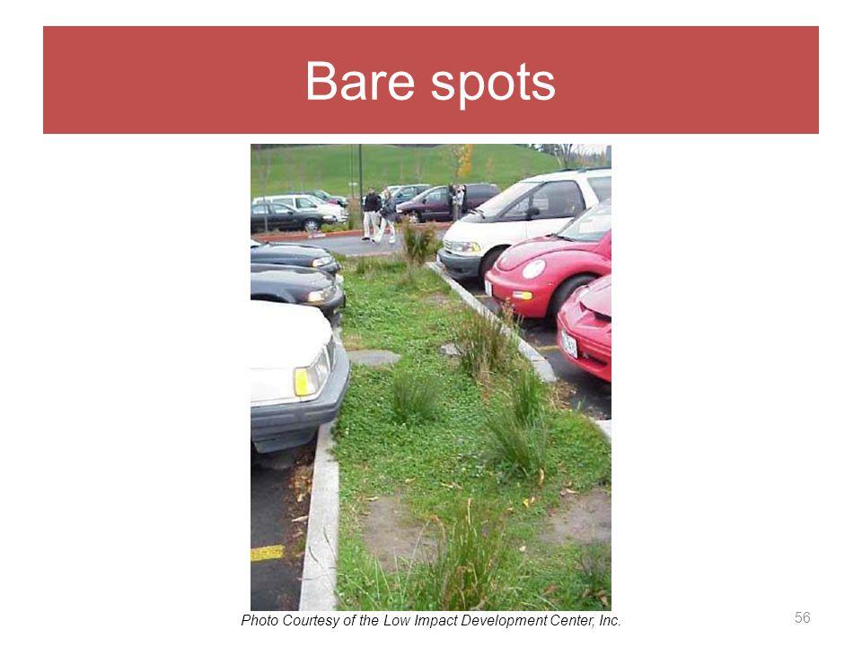 Bare spots 56 Photo Courtesy of the Low Impact Development Center, Inc.