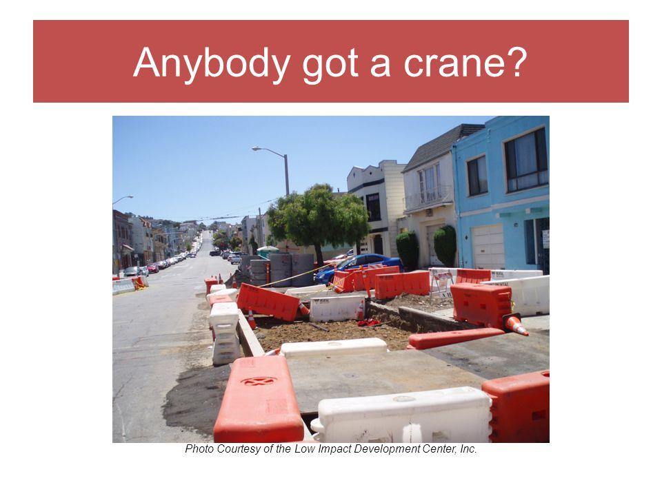 Anybody got a crane Photo Courtesy of the Low Impact Development Center, Inc.