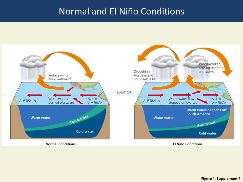 Figure 4, Supplement 7 Normal and El Niño Conditions