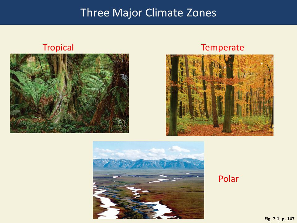 Three Major Climate Zones Fig. 7-1, p. 147 TropicalTemperate Polar
