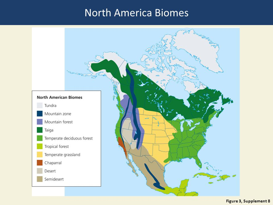 Figure 3, Supplement 8 North America Biomes