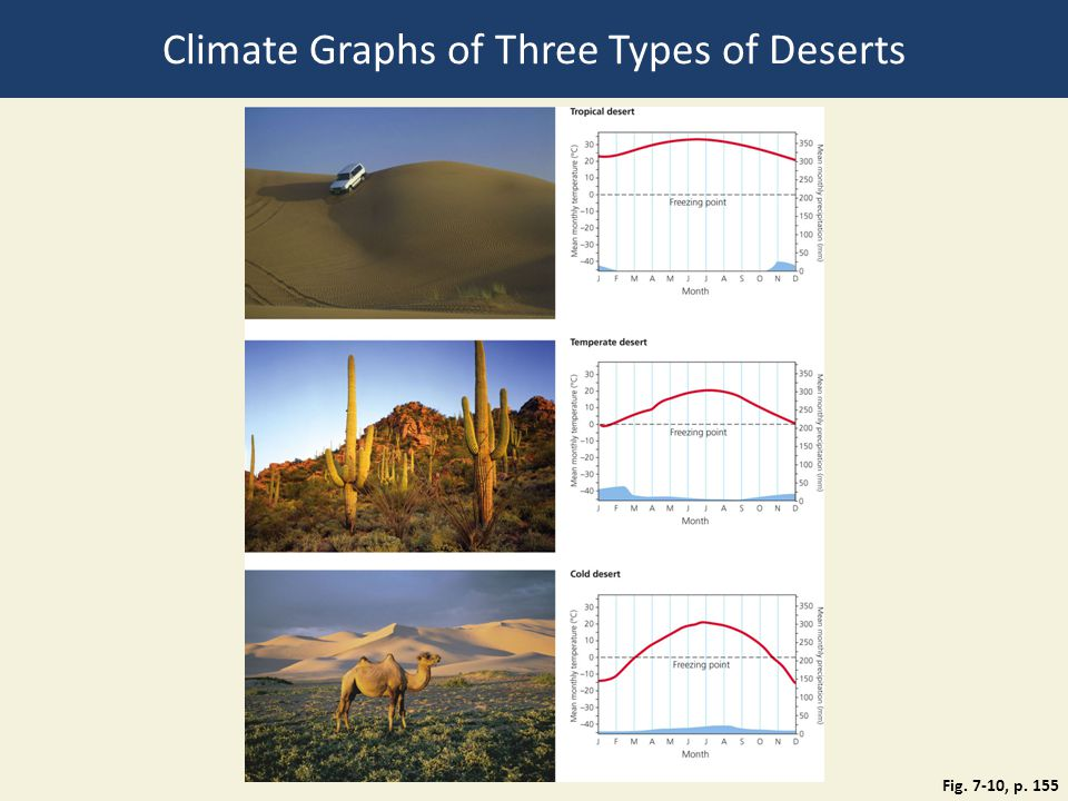 Fig. 7-10, p. 155 Climate Graphs of Three Types of Deserts