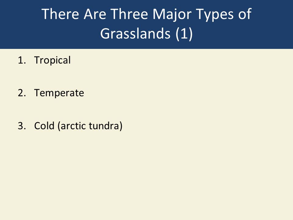 There Are Three Major Types of Grasslands (1) 1.Tropical 2.Temperate 3.Cold (arctic tundra)