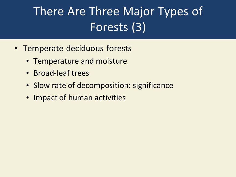 There Are Three Major Types of Forests (3) Temperate deciduous forests Temperature and moisture Broad-leaf trees Slow rate of decomposition: significa