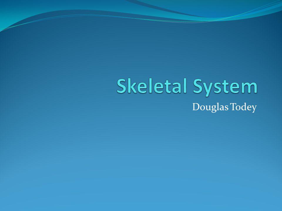 Douglas Todey