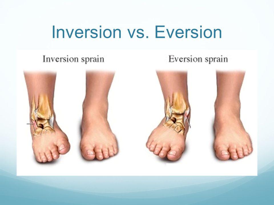Inversion vs. Eversion