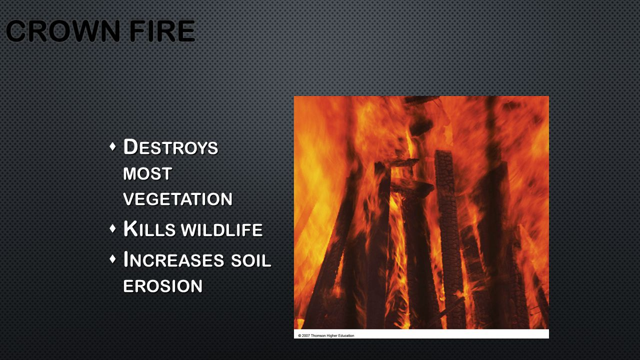  D ESTROYS MOST VEGETATION  K ILLS WILDLIFE  I NCREASES SOIL EROSION