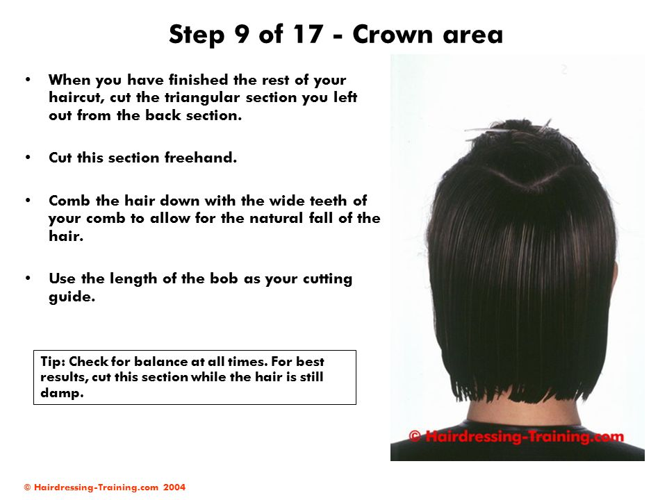 © Hairdressing-Training.com 2004 Step 9 of 17 - Crown area When you have finished the rest of your haircut, cut the triangular section you left out from the back section.