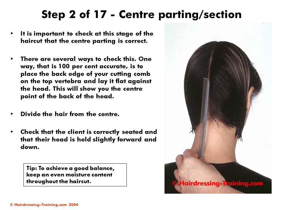 © Hairdressing-Training.com 2004 Step 2 of 17 - Centre parting/section It is important to check at this stage of the haircut that the centre parting is correct.