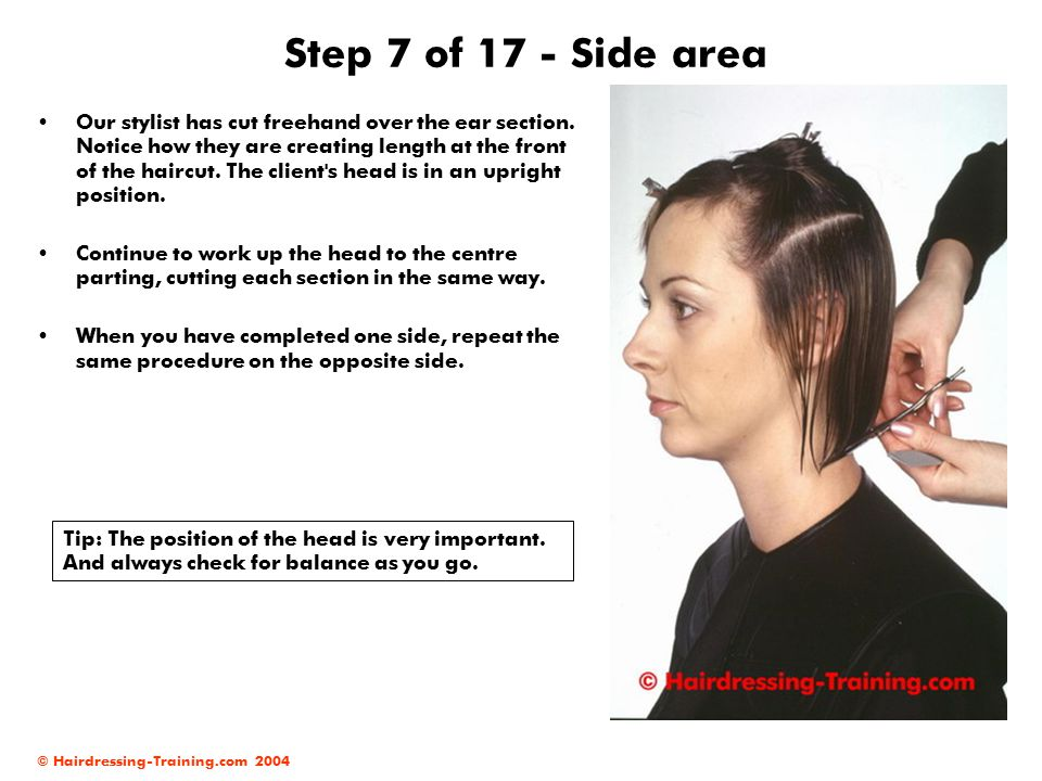 © Hairdressing-Training.com 2004 Step 7 of 17 - Side area Our stylist has cut freehand over the ear section.