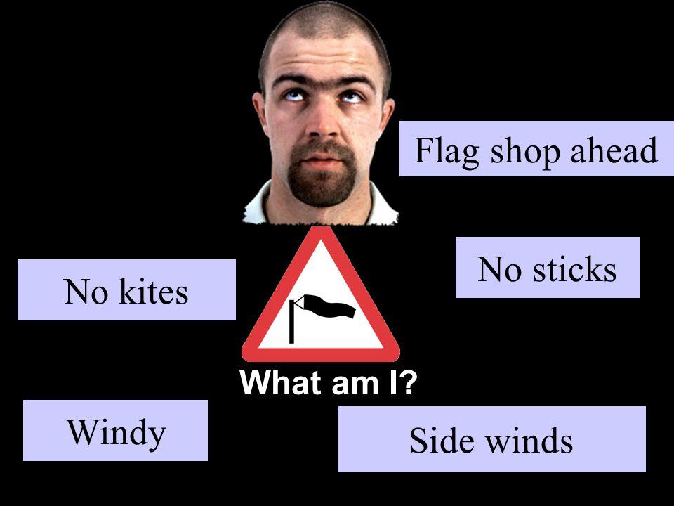 What am I No kites Side winds No sticks Windy Flag shop ahead