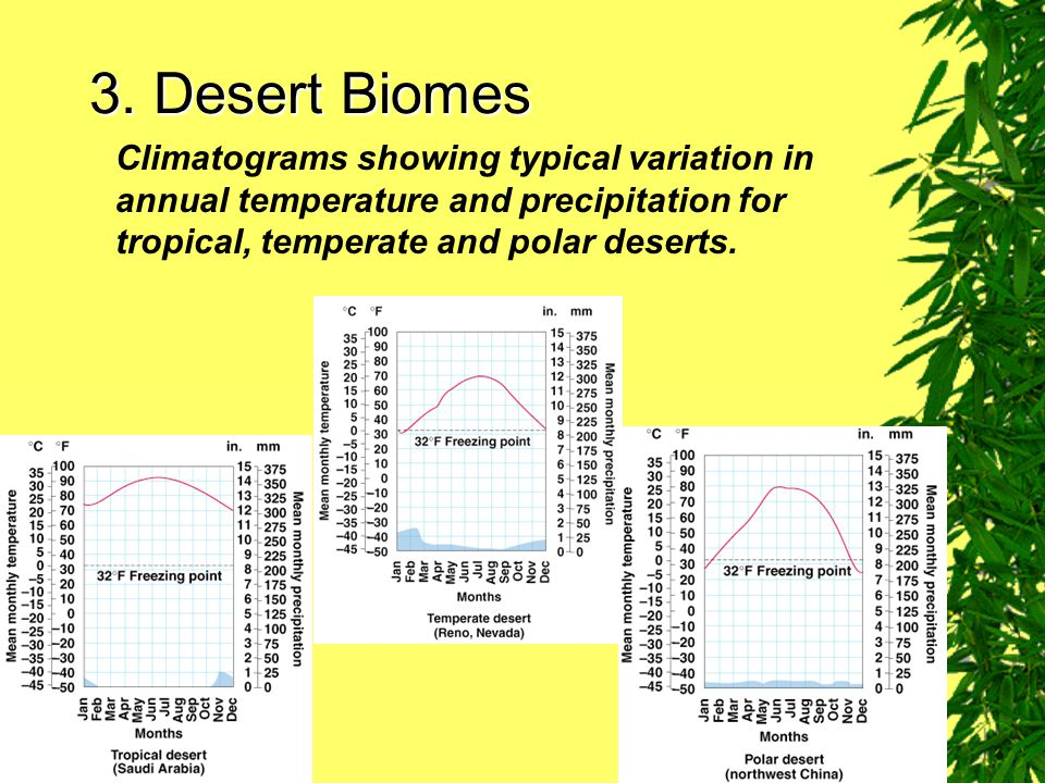 3. Desert Biomes Climatograms showing typical variation in annual temperature and precipitation for tropical, temperate and polar deserts.