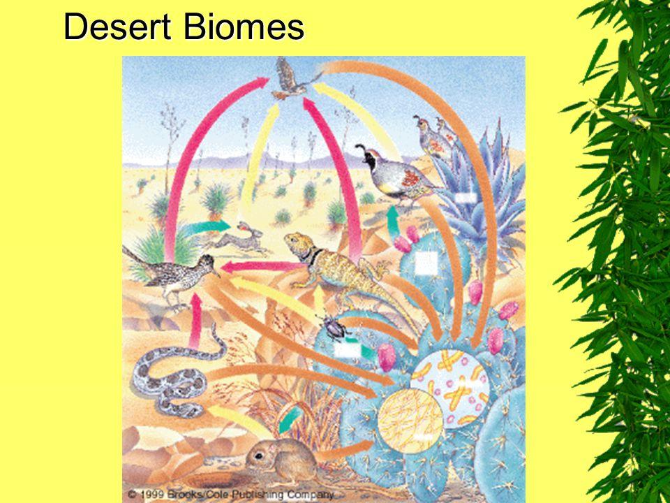 Desert Biomes Fig. 7–15