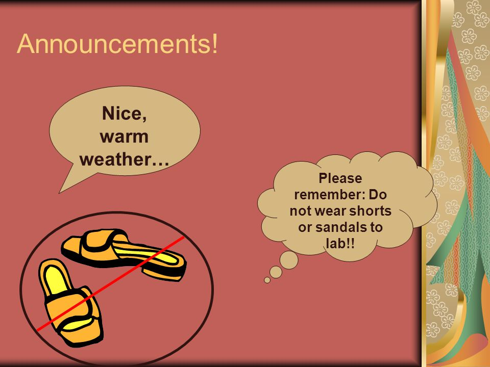 Announcements! Nice, warm weather… Please remember: Do not wear shorts or sandals to lab!!