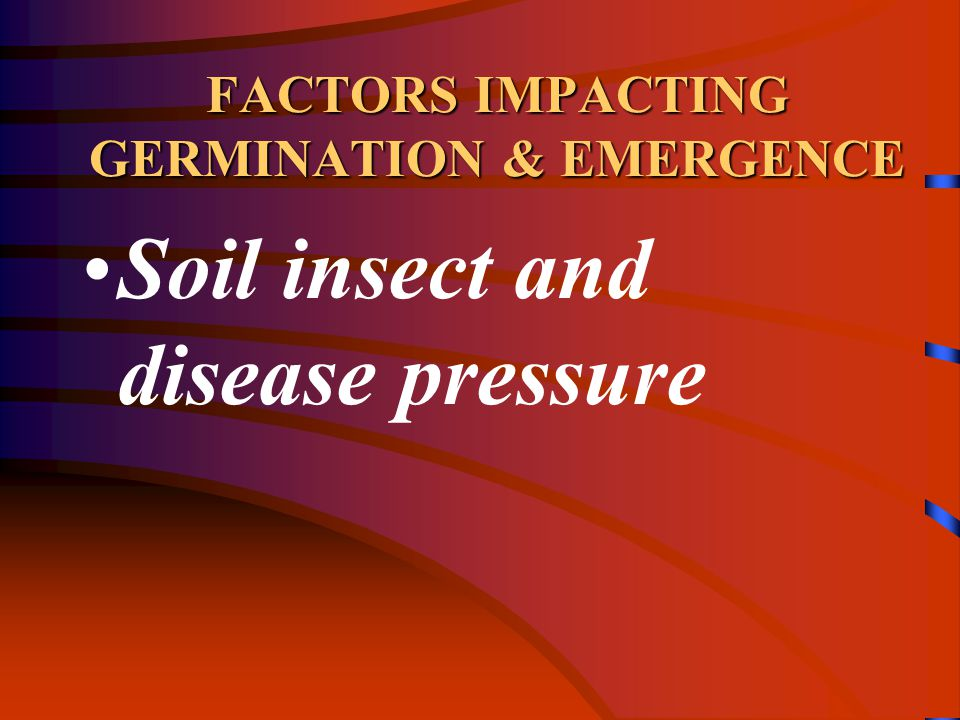 FACTORS IMPACTING GERMINATION & EMERGENCE Soil insect and disease pressure