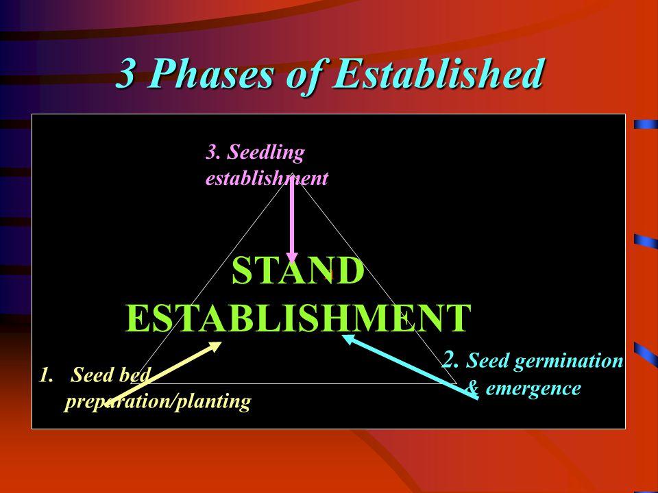 Establishment –Phase I n STAND ESTABLISHMENT 1.Seed bed preparation/planting