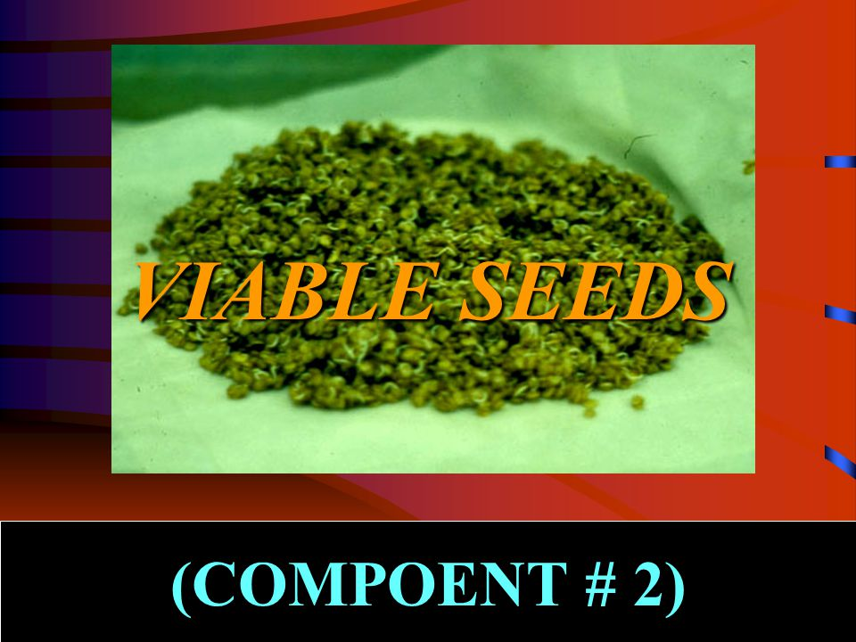 VIABLE SEEDS (COMPOENT # 2)