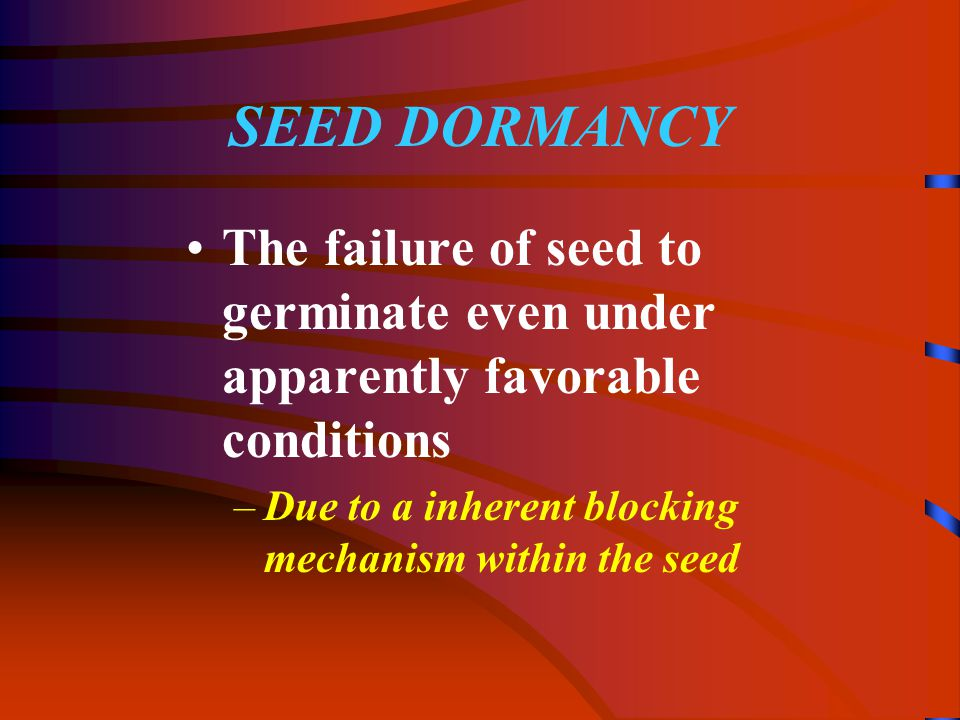 SEED DORMANCY The failure of seed to germinate even under apparently favorable conditions –Due to a inherent blocking mechanism within the seed