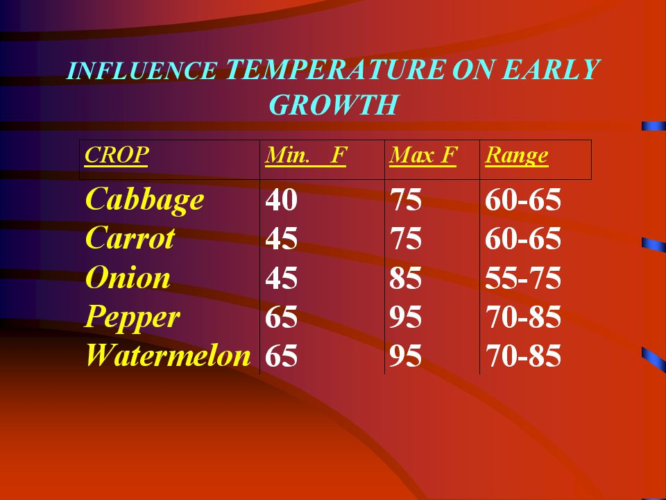 INFLUENCE TEMPERATURE ON EARLY GROWTH