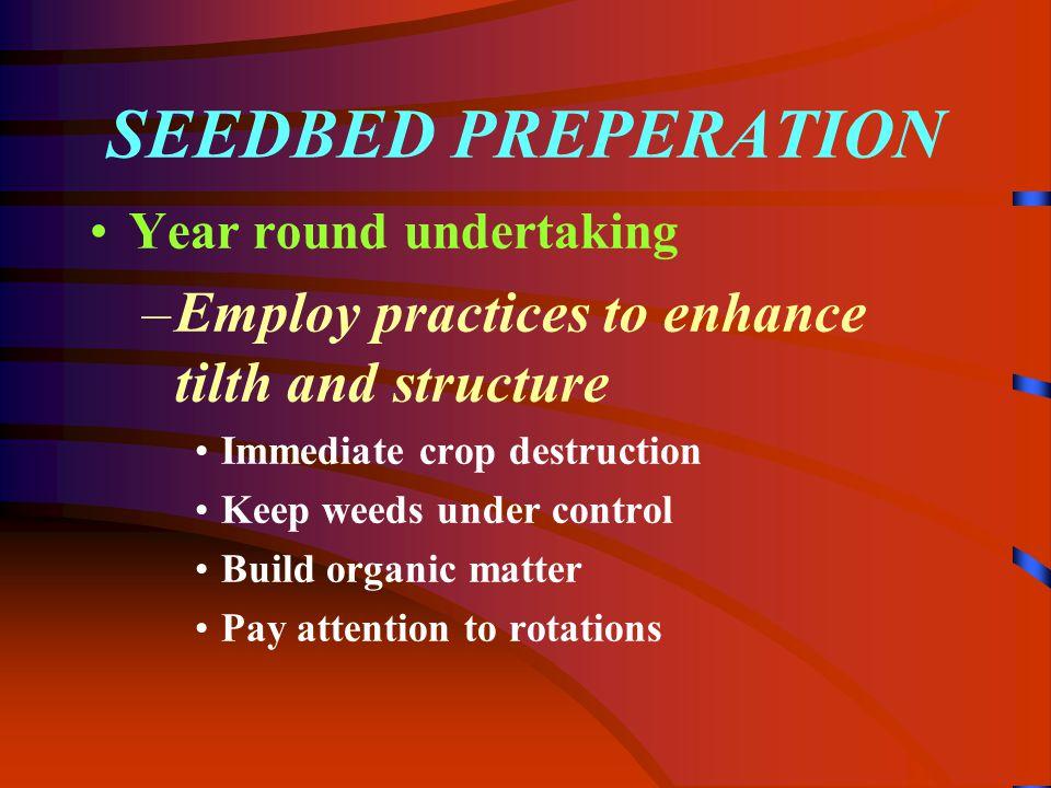 Establishment- Phase III Seedling establishment PHASE 3