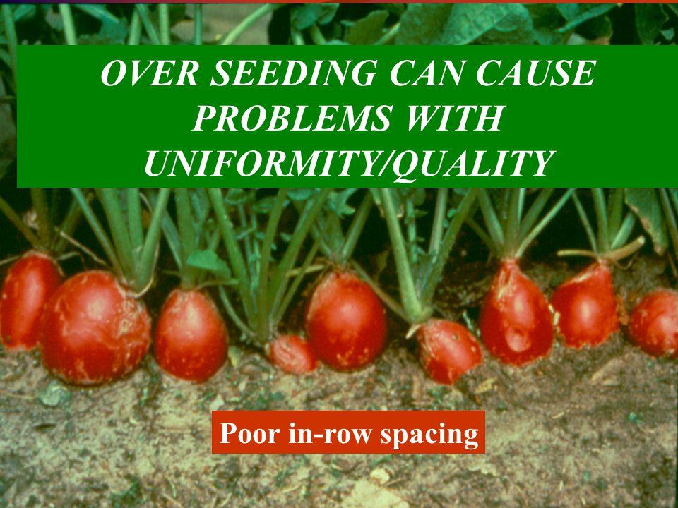 Establishment- Phase II 2. Seed germination & emergence PHASE 2