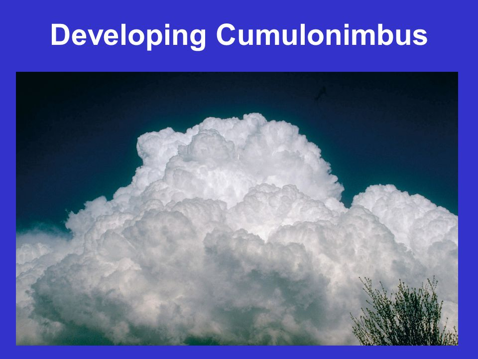 Developing Cumulonimbus